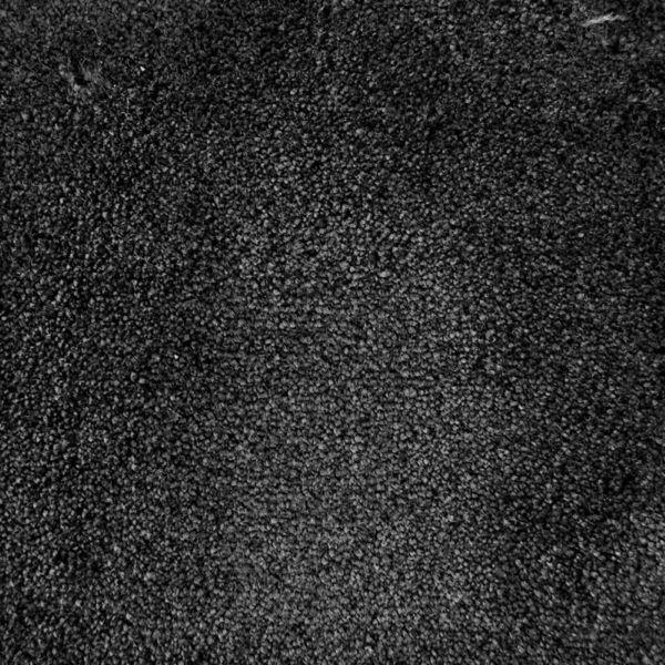 Dark Shadow 98